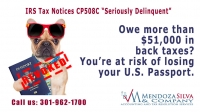 Passport Alert – IRS Tax Debts May Revoke Your Passport